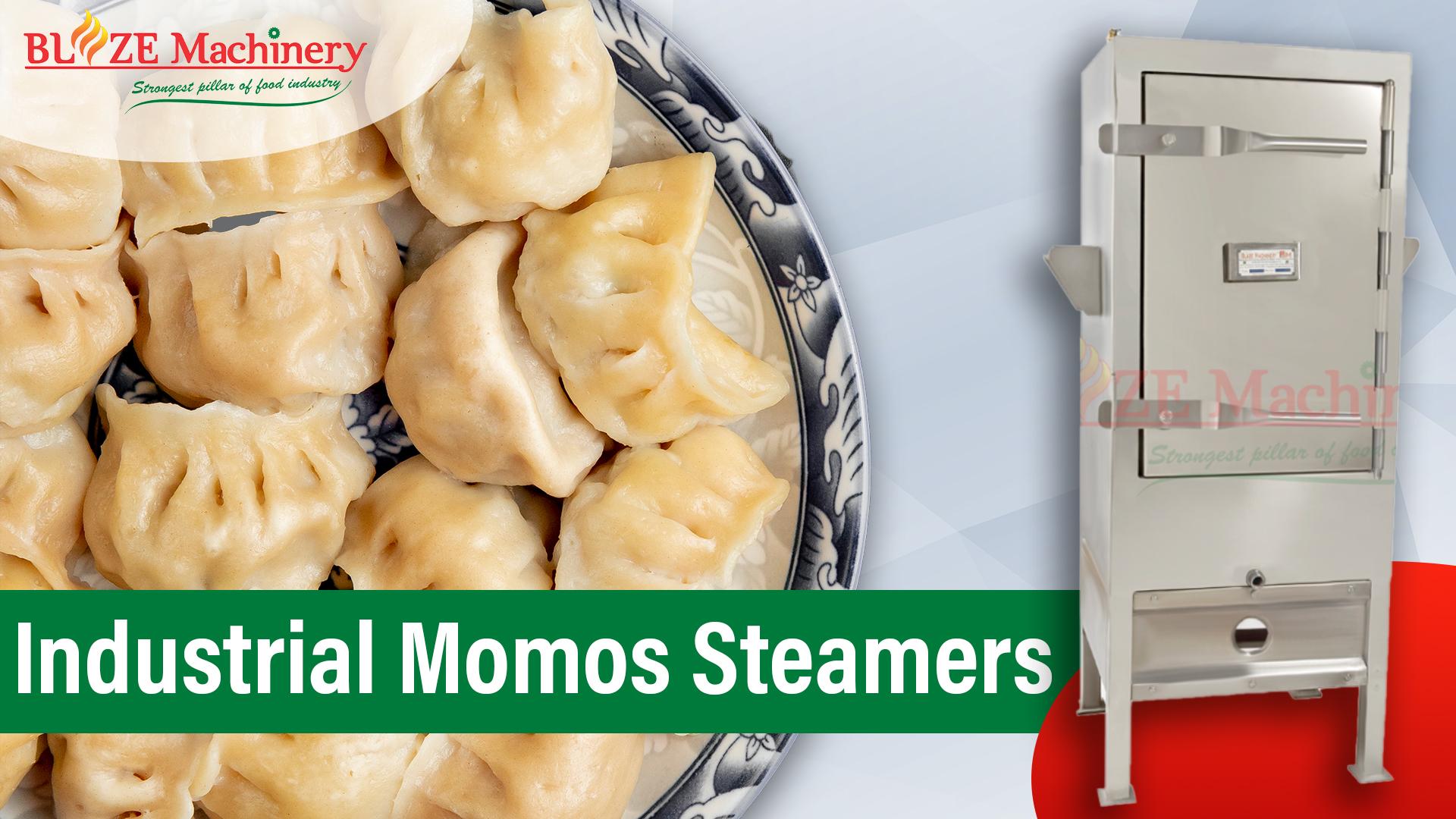 Industrial Momos Steamer